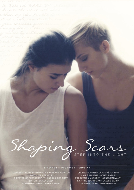 shaping_scars_movie_poster.jpg